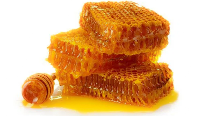 Dog Wounds and Manuka Honey: Our Experience Using Raw Manuka Honey for Wound Care