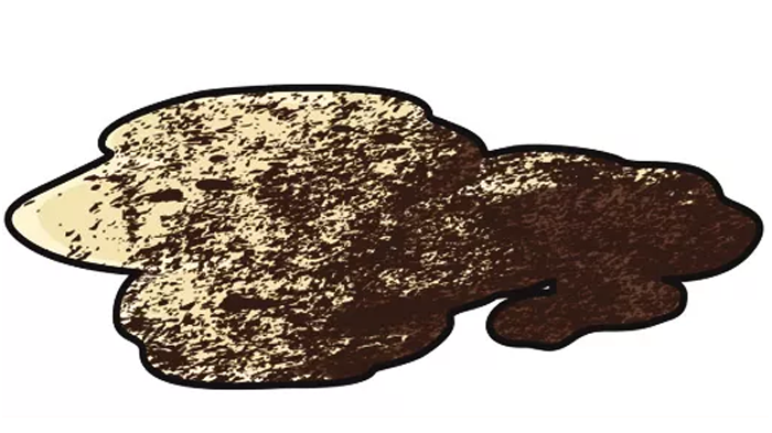 Coffee Grounds in a Dog's Vomit: What Is That Dark Grit in My Dog's Vomit?