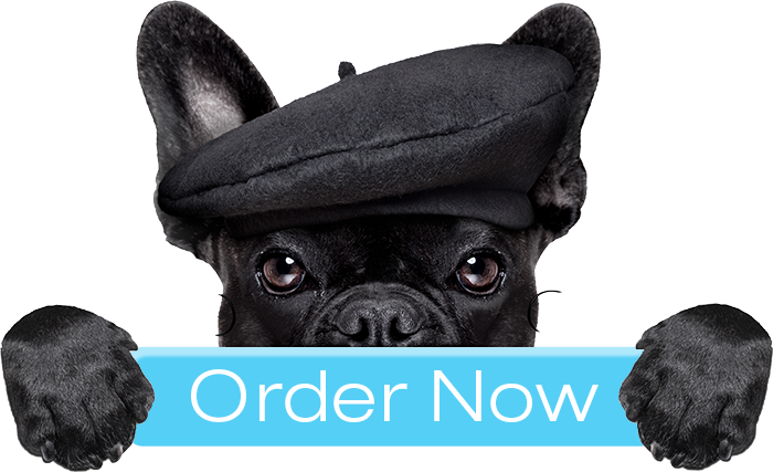 Symptoms to Watch for in Your Dog: Order Now