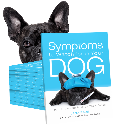 Share Your Story to Win Symptoms to Watch for in Your Dog